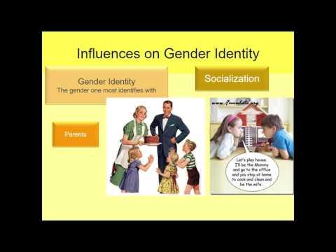 Human Sexuality Ch 10 Development of gender identity