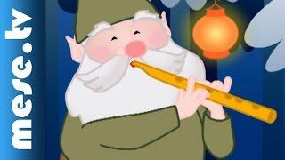 Weöres Sándor: Suttog a fenyves (animáció, mese, Karácsonyi dal) | MESE TV