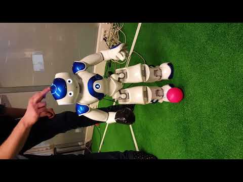 Kick Project Autonomous Systems Practical