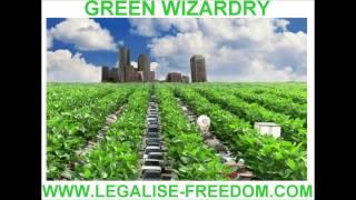 John Michael Greer - Green Wizardry