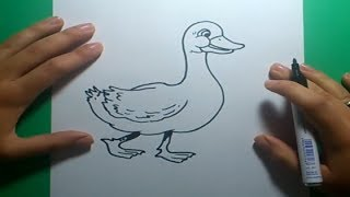 Como dibujar un pato paso a paso 7  | How to draw a duck 7