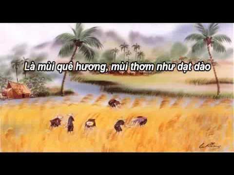 Tình Ca Trên Lúa - Tuấn Vũ & Sơn Tuyền