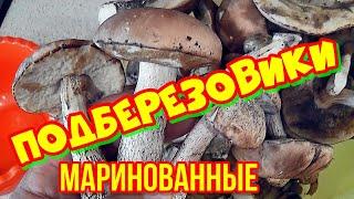ГРИБЫ ПОДБЕРЕЗОВИКИ Маринованные грибы + Грибы Зонтики