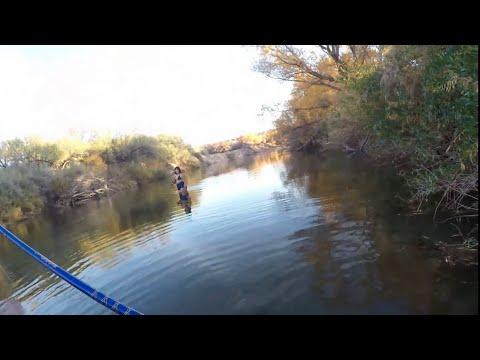 Winter Bass Fishing The Lower Salt River 4K