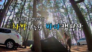 [솔로차박] 바다캠핑 l 차박캠핑 l 몽산포오토캠핑장 …