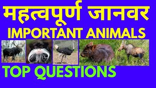 Important Questions of Animals | Important questions for KBC