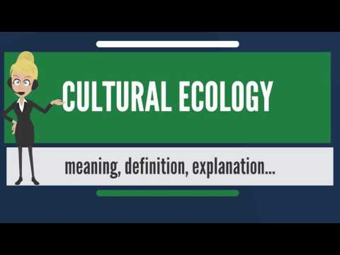 What is CULTURAL ECOLOGY? What does CULTURAL ECOLOGY mean? CULTURAL ECOLOGY meaning & explanation