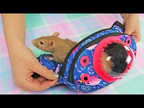 Pet Travel Bag DIY  Cute Bag For Pet Rat or Humster