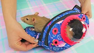 Pet Travel Bag DIY| Cute Bag For Pet Rat or Humster