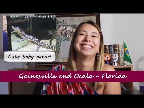 Você já ouviu falar de Gainesville ou Ocala (Florida)? Venha descobrir! (Portuguese)