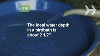 How To Make An Easy Birdbath