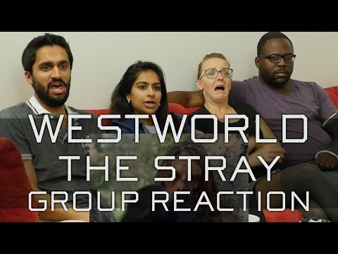 Westworld - 1x3 The Stray - Group Reaction