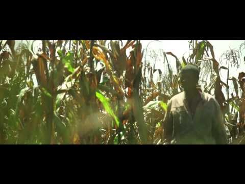 Partnerships in Seed Sector Development in Ethiopia  (Short Version)