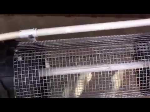 Trommel How To Make Peddel Powered Full Video Doovi