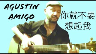 "Agustin Amigo - ""You better not think about me 你就不要想起我"" (Hebe Tien 馥甄) - Solo Acoustic Guitar"