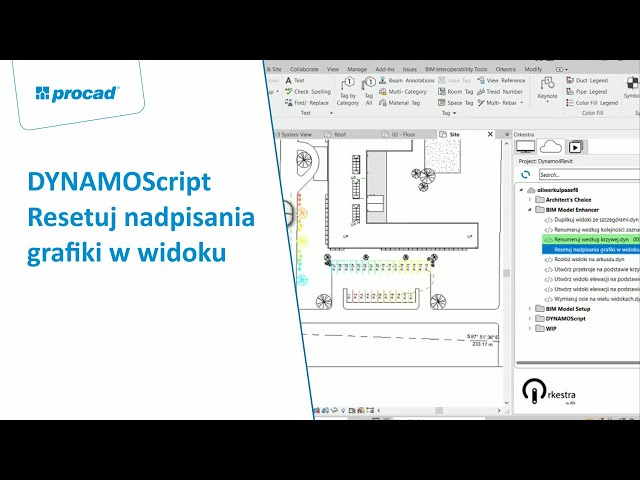DYNAMOScript - Resetuj nadpisania grafiki w widoku