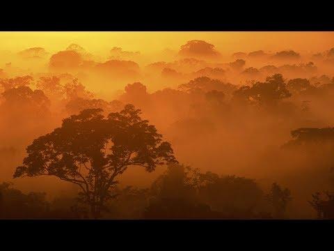 Zen Relaxation Music: Sunrise Meditation   Orange & Yellow   Beta 13 hz in C   ♒Brainwave Sync♒