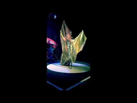 "Toc toc show prod invite Veronica Antonelli ""Cold song"" de Purcell"