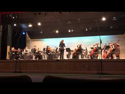 Barron Collier High School Chamber Orchestra MPA 2017