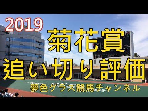 【追い切り評価】2019菊花賞全頭!乗り替わりはプラス?ニシノデイジーとルメール騎手のコンタクトは?