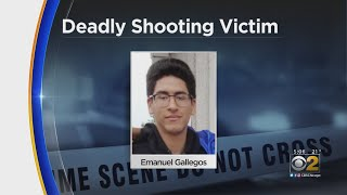 17-Year-Old Emanuel Gallegos Killed In Old Irving Park Shooting