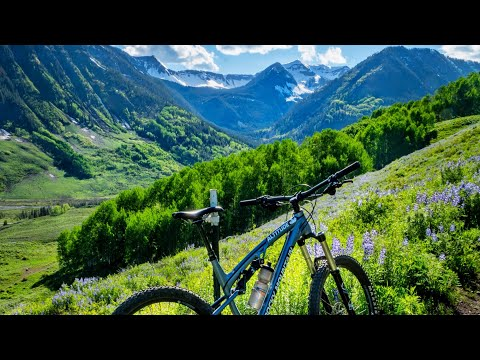 The Travel Crested Butte Show Ep 6 - Trail Guide: Lupine 4K