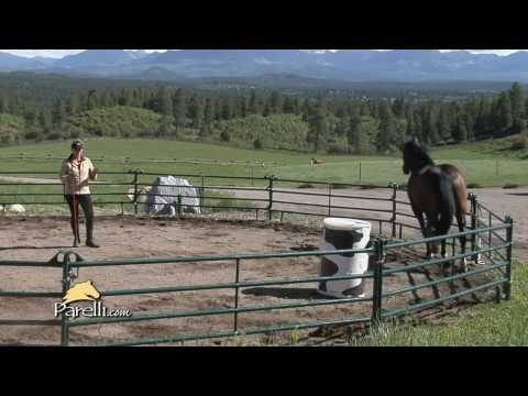 interview-with-pat-parelli-natural-horseman---get-started-part-2-(4-of-4)