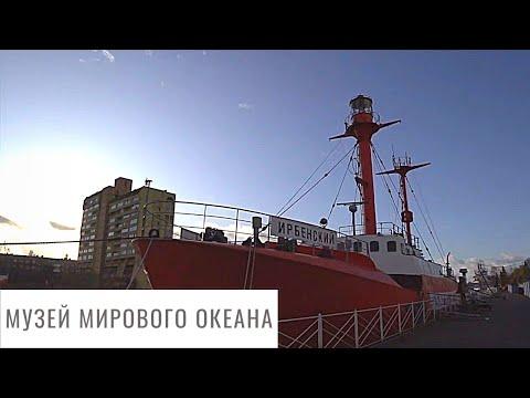 Что интересного в Музее мирового океана? Big Blog