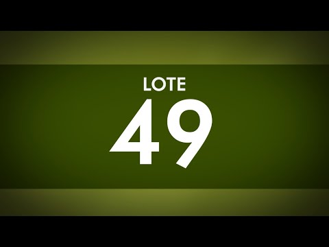 LOTE 49