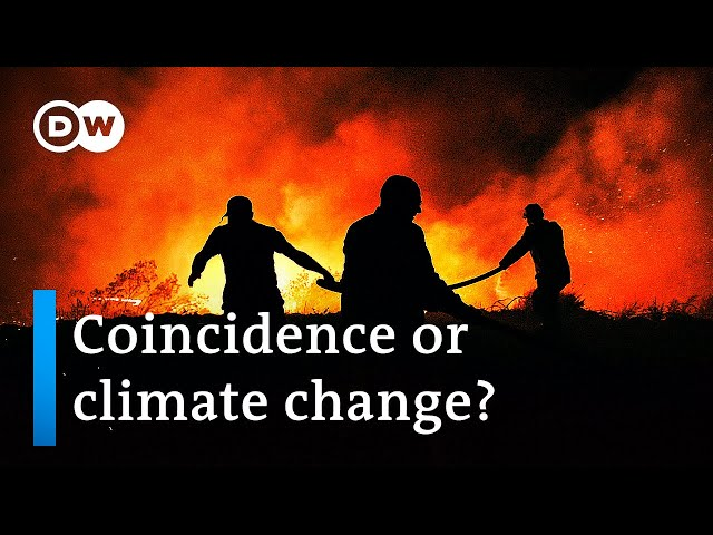 Wildfires rage across Europe fed by wind and soaring temperatures | DW News