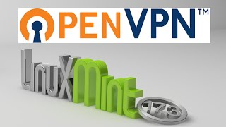 Install OpenVPN in Linux Mint / Ubuntu