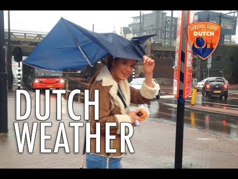 #8 - How to survive the Dutch weather