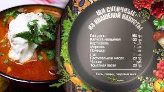 Как приготовить щи суточные из квашеной капусты? Рецепт от шеф-повара.