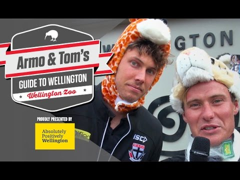 Armo & Tom's guide to: Wellington Zoo