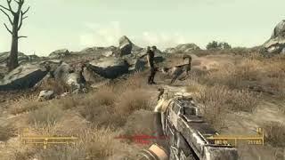 When Your Hitman is an Avid PETA Member - Fallout 3