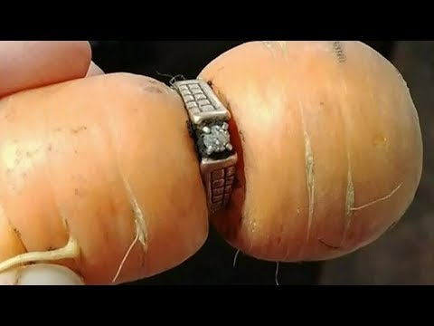 One carrot diamond: Woman finds lost ring inside vegetable