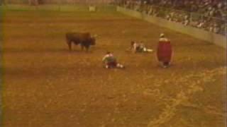 1982 Leon Coffee-Bull Fighter