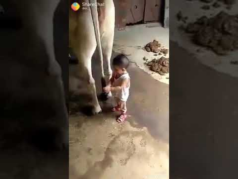 indian Funny comeddy byybi । funny video clip