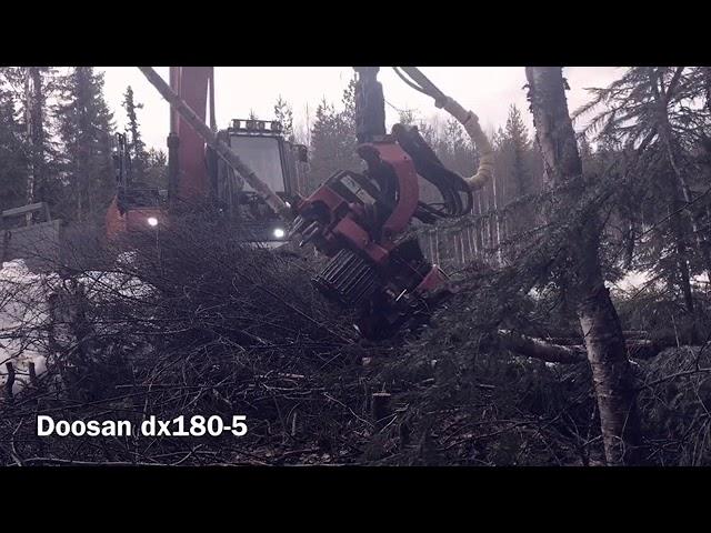 Doosan 180-5  Harvester
