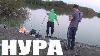 """Рыбалка """"Карась в августе"""" ловля карася в Казахстане на реке Нура. Рыбалка в Астане"""