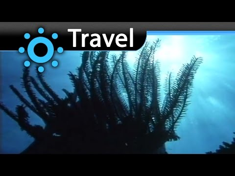 Walangee Queensland Australia Vacation Travel Video Guide