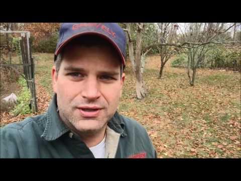 Saturday AM Fun John Deere 214 Kohler k321 Fuel Pump Fix, Mowing  and Giant Vac Leaf Blowing