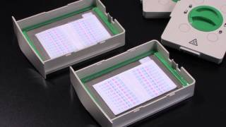 Protein Blotting Using the Trans-Blot® Turbo™ Transfer System
