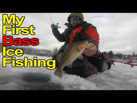 My First Bass Ice Fishing -Catching The Multi Species-