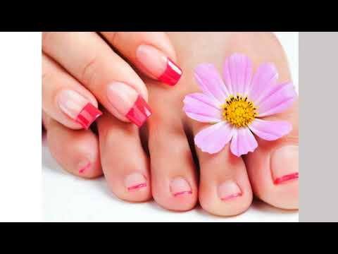 Top Rated Nail Salons in Florida