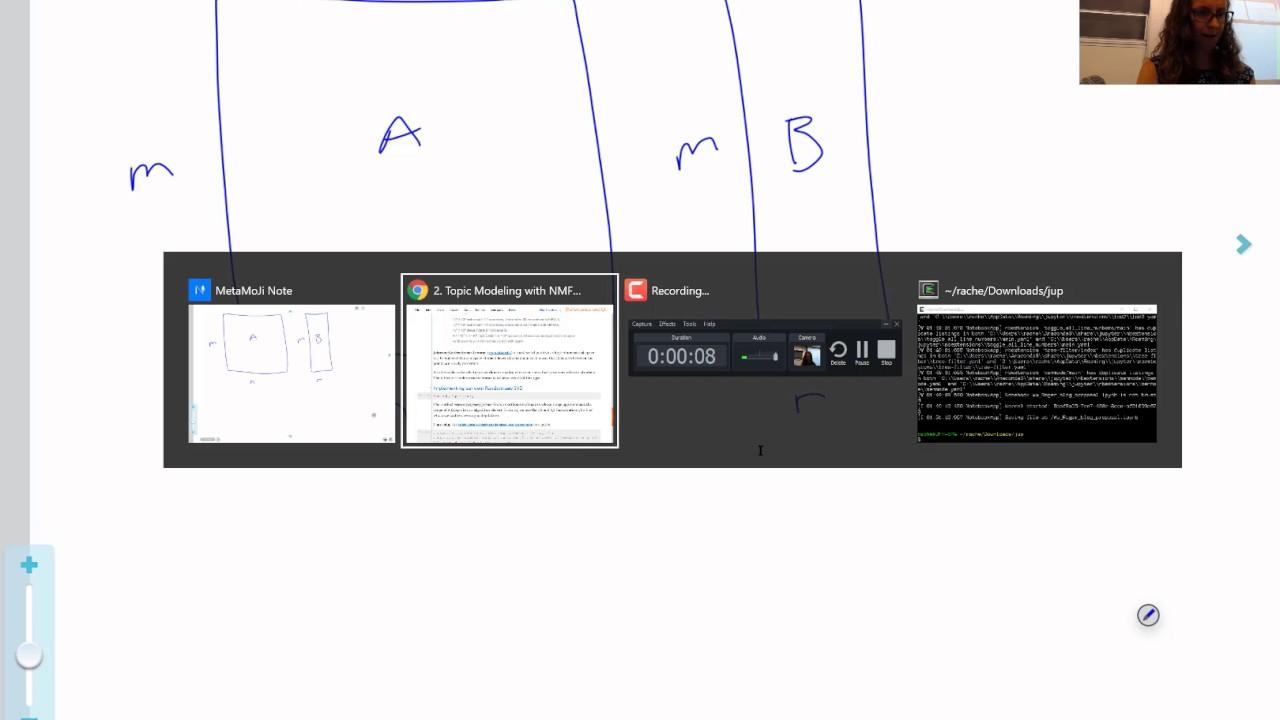 Computational Linear Algebra 4: Randomized SVD & Robust PCA