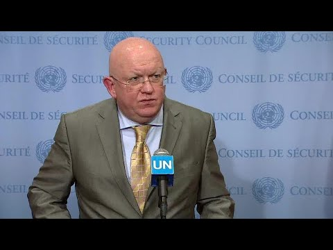 Russia on the consultations on Yemen & other matters - Media Stakeout (13 June 2018)