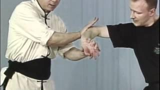 Tai Chi, Тай чи Ч22 Da Peng Ao Chi, рычаг пальцев выверт руки