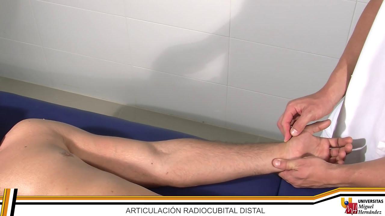 como sobar tendones de la mano