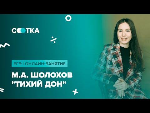 "М.А. Шолохов ""Тихий Дон"" | ЕГЭ ЛИТЕРАТУРА 2020 | Онлайн-школа СОТКА"